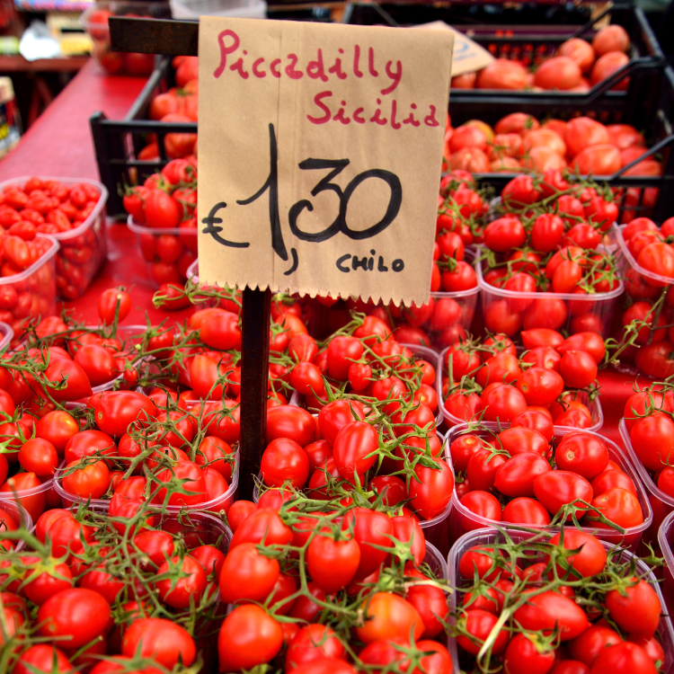 fresh tomatoes for sale at turin market